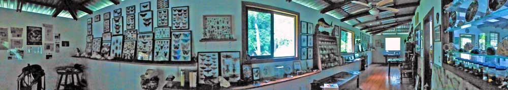 Panorama-Museum-2