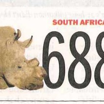 688 Rhinos in South Africa killed – only in 2013