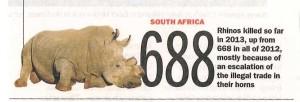 rhinopostnew