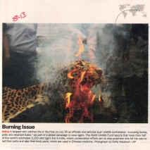 Burning Issue
