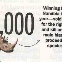 Namibia – Winning bid for a permit
