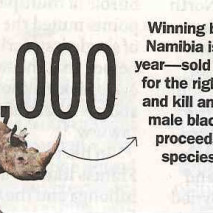 Namibia – Winning bid for a permit